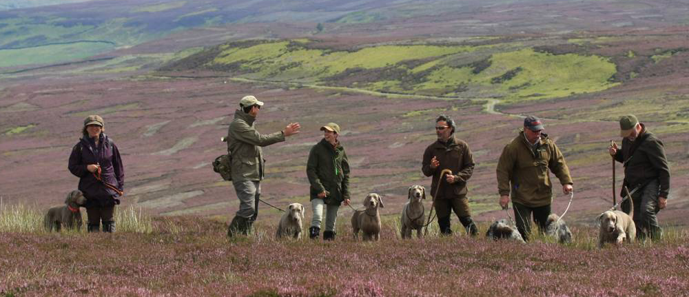 Group on grouse day